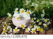 Купить «Крем с ромашкой», фото № 2006879, снято 26 июля 2010 г. (c) Татьяна Белова / Фотобанк Лори