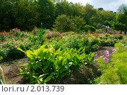 Купить «Ботанический сад осенью», фото № 2013739, снято 26 сентября 2010 г. (c) Сергеев Игорь / Фотобанк Лори