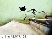 Купить «Рисованный кот на стене, спускающийся по ступенькам», фото № 2017159, снято 25 августа 2010 г. (c) Сергей Лешков / Фотобанк Лори