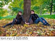 Купить «Осенняя история любви», фото № 2020055, снято 26 сентября 2010 г. (c) Okssi / Фотобанк Лори