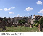 Рим, форум со стороны Колизея (2008 год). Стоковое фото, фотограф Дмитрий Казанцев / Фотобанк Лори