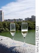 Шампанское. Стоковое фото, фотограф Ольга Стрейкмане / Фотобанк Лори