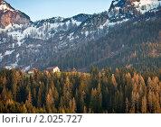 Домик в альпах (2010 год). Стоковое фото, фотограф Максим Блинов / Фотобанк Лори