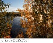 Золото осени. Стоковое фото, фотограф Максим Блинов / Фотобанк Лори