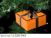 Купить «Праздничный подарок висит на рождественской елке», фото № 2028943, снято 5 декабря 2009 г. (c) Losevsky Pavel / Фотобанк Лори