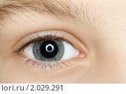 Купить «Детский глаз крупным планом», фото № 2029291, снято 11 декабря 2009 г. (c) Losevsky Pavel / Фотобанк Лори