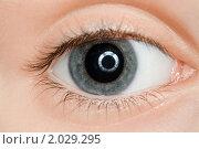 Купить «Детский глаз крупным планом», фото № 2029295, снято 11 декабря 2009 г. (c) Losevsky Pavel / Фотобанк Лори
