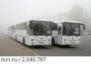 Купить «Туман», фото № 2040787, снято 10 октября 2010 г. (c) Art Konovalov / Фотобанк Лори