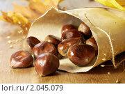 Купить «Жареные каштаны в бумажном пакете», фото № 2045079, снято 9 октября 2010 г. (c) Влад Нордвинг / Фотобанк Лори