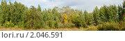 Купить «Осенний пейзаж», фото № 2046591, снято 11 октября 2010 г. (c) Алексей Букреев / Фотобанк Лори
