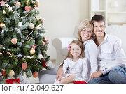 Купить «Счастливая семья у новогодней елки», фото № 2049627, снято 17 сентября 2010 г. (c) Raev Denis / Фотобанк Лори