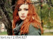 Купить «Девушка в ветках боярышника», фото № 2054827, снято 12 октября 2010 г. (c) Ткачёва Ольга / Фотобанк Лори