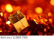 Купить «Новогодний подарок», фото № 2069743, снято 10 октября 2010 г. (c) yarruta / Фотобанк Лори