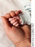 Рука младенца в руке отца. Стоковое фото, фотограф Александр Рюмин / Фотобанк Лори