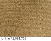 Купить «Бежевая тканевая текстура - изнаночная сторона атласа», фото № 2091755, снято 21 сентября 2010 г. (c) Светлана Ильева (Иванова) / Фотобанк Лори