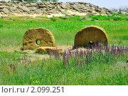 """Купить «Украина. Историко-археологический природный заповедник """"Каменная могила""""», фото № 2099251, снято 20 июня 2010 г. (c) T&B / Фотобанк Лори"""