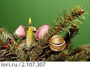 Купить «Новогодняя елка с украшениями», фото № 2107307, снято 16 января 2010 г. (c) Андрей Востриков / Фотобанк Лори