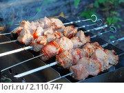 Купить «Шашлык», фото № 2110747, снято 17 июля 2010 г. (c) Сергей Куров / Фотобанк Лори