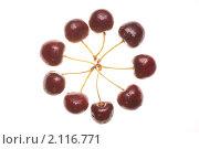 Купить «Круг из вишни с каплями воды на белом фоне», фото № 2116771, снято 5 июля 2009 г. (c) Бурков Андрей / Фотобанк Лори