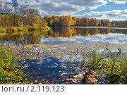 Золотые берега озера. Стоковое фото, фотограф Николай Решетников / Фотобанк Лори