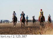 Казахские национальные скачки- байга. Редакционное фото, фотограф Юлия Врублевская / Фотобанк Лори