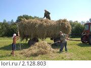 Купить «Сенокос», фото № 2128803, снято 6 июля 2010 г. (c) Барская Елена Николаевна / Фотобанк Лори