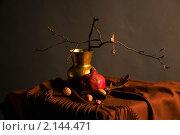 Купить «Осень», фото № 2144471, снято 12 ноября 2010 г. (c) Ирина Литвин / Фотобанк Лори