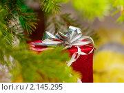 Купить «Подарок под елкой», фото № 2145295, снято 24 февраля 2008 г. (c) Алена Роот / Фотобанк Лори