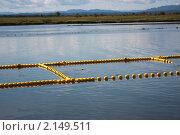 Купить «Промысел горбуши на Сахалине», фото № 2149511, снято 17 сентября 2009 г. (c) Пьянков Александр / Фотобанк Лори