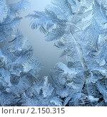 Купить «Морозный  узор - зимняя фантазия на окне», фото № 2150315, снято 20 февраля 2010 г. (c) ElenArt / Фотобанк Лори