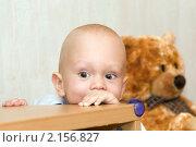 Купить «Ребенок играя выглядывает из-за стола», фото № 2156827, снято 1 ноября 2010 г. (c) Pukhov K / Фотобанк Лори
