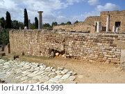 Купить «Каменная дорога и развалины старых римских вилл в Карфагене, Тунис», фото № 2164999, снято 23 октября 2009 г. (c) Валерий Шанин / Фотобанк Лори