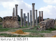 Купить «Римские колонны в развалинах Карфагена в Тунисе», фото № 2165011, снято 23 октября 2009 г. (c) Валерий Шанин / Фотобанк Лори
