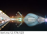 Купить «Валенсия. Город искусства и науки ночью», фото № 2174123, снято 7 ноября 2010 г. (c) Maria Kuryleva / Фотобанк Лори