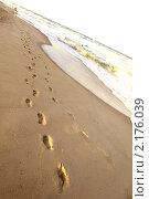 Купить «Следы на песчаном пляже», фото № 2176039, снято 30 декабря 2008 г. (c) Иван Михайлов / Фотобанк Лори