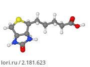 Купить «Шаростержневая модель молекулы биотина», иллюстрация № 2181623 (c) Владимир Федорчук / Фотобанк Лори