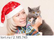 Девушка в новогоднем колпаке Деда Мороза с кошкой британской породы. Стоковое фото, фотограф Анастасия Шелестова / Фотобанк Лори