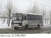 Купить «Снегопад», фото № 2196991, снято 21 апреля 2009 г. (c) Art Konovalov / Фотобанк Лори