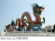 Купить «Большой дракон на храме в Нахон Саван, Таиланд», фото № 2198003, снято 19 января 2010 г. (c) Валерий Шанин / Фотобанк Лори