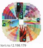 Купить «Цветовые гаммы времён года», фото № 2198179, снято 7 декабря 2010 г. (c) Александр Черемнов / Фотобанк Лори
