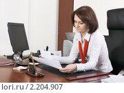 Купить «Бизнес-леди», фото № 2204907, снято 3 декабря 2010 г. (c) Игорь Долгов / Фотобанк Лори