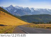 Купить «Дорога к снежным вершинам. Алтай», фото № 2215635, снято 3 августа 2010 г. (c) Наталья Громова / Фотобанк Лори