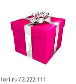 Купить «Подарок», иллюстрация № 2222111 (c) Сергей Куров / Фотобанк Лори