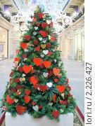 Купить «Новогодняя елка, украшенная сердечками», эксклюзивное фото № 2226427, снято 17 декабря 2010 г. (c) Валерия Попова / Фотобанк Лори