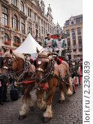 Фестиваль пива в Брюсселе (2010 год). Редакционное фото, фотограф Дмитрий Бороздин / Фотобанк Лори