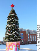 Купить «Городская елка», фото № 2235563, снято 19 февраля 2019 г. (c) Володина Ольга / Фотобанк Лори