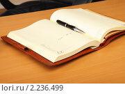 Купить «Персональный органайзер и ручка на столе», фото № 2236499, снято 13 октября 2010 г. (c) Андрей Липко / Фотобанк Лори