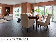 Купить «Современный дом, гостиная с современной мебелью», фото № 2236511, снято 17 июля 2010 г. (c) Игорь Бородин / Фотобанк Лори