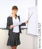 Портрет молодой деловой женщины. Стоковое фото, фотограф Андрей Липко / Фотобанк Лори