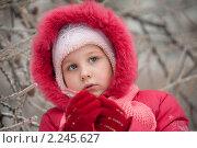 Купить «Девочка зимой», фото № 2245627, снято 26 декабря 2010 г. (c) Лена Лазарева / Фотобанк Лори